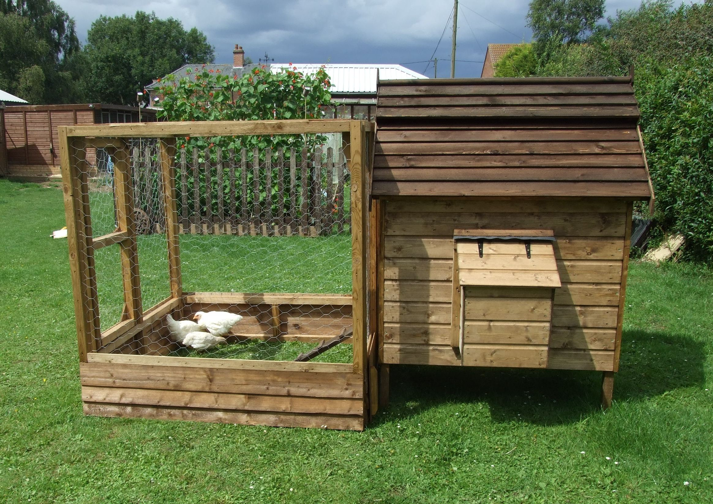 Chicken coops to build chicken coops to build review for Build your home