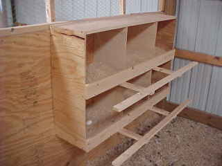 Best Chicken Nesting Boxes Plans » chicken coop to build & chicken coop to build | Chicken Coops To Build Review Aboutintivar.Com